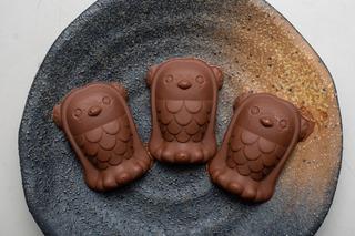 アマビエ チョコレート完成_0519.jpg